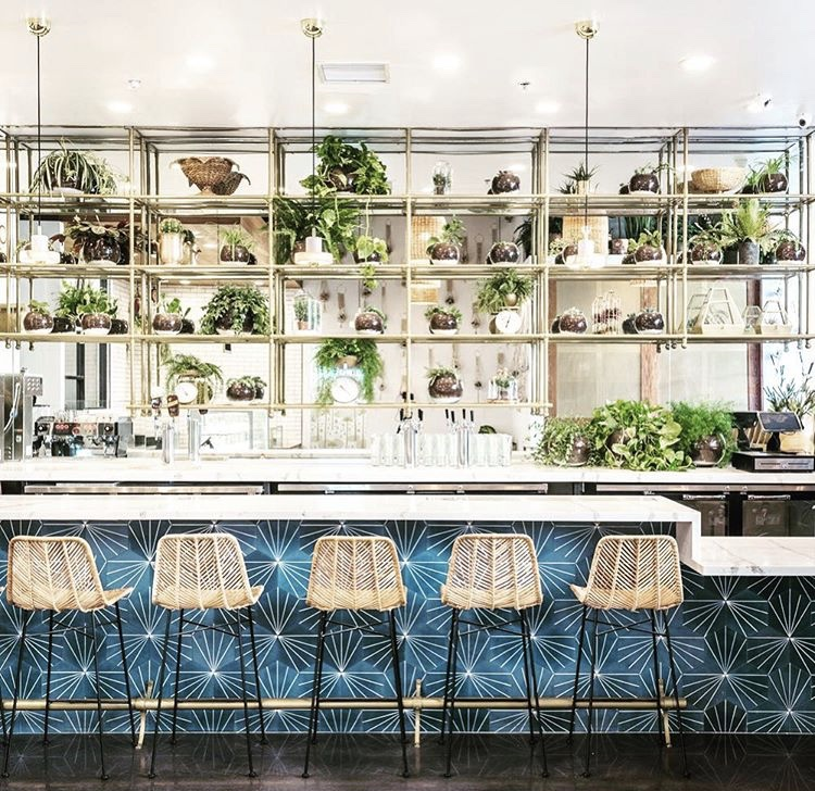 Get The Look Of Fundamental La S Downtown Bar Using Granada Cement Tiles New Orleans Hex